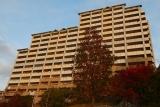 神戸市営住宅・ベルデ名谷 4番館を見上げる