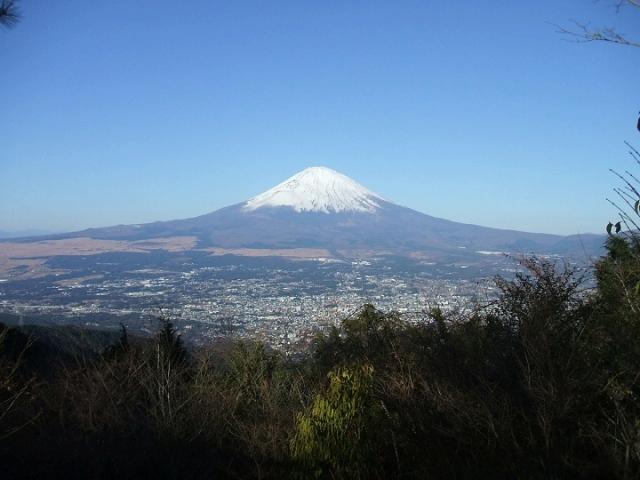 ネット富士山
