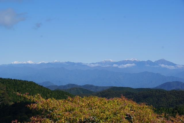 茶臼山から南アルプス