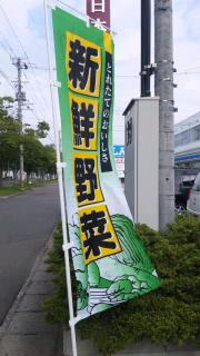 SH3E08930001.jpg