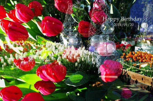 happy_20140120213026066.jpg