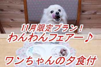 wanwanf_201411040148165df.jpg