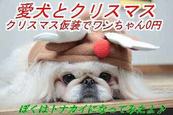 xms_20141014012138469.jpg