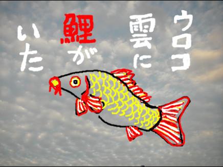 ウロコ雲に鯉