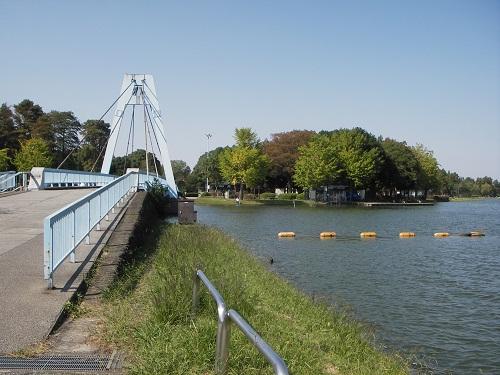 水元大橋付近