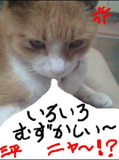 何!!三平