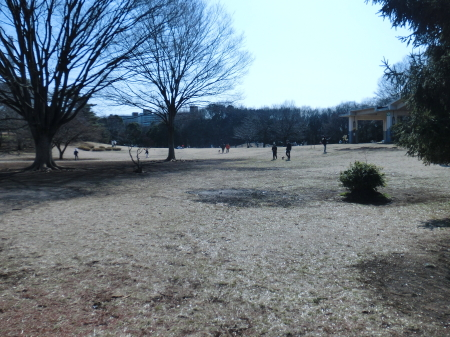 20110213IMG_0003.jpg