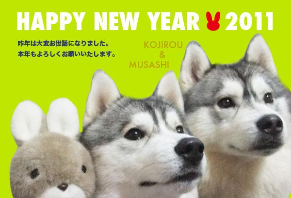 2011コジムサ年賀状