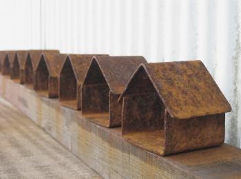 錆びた鉄の家:成育中