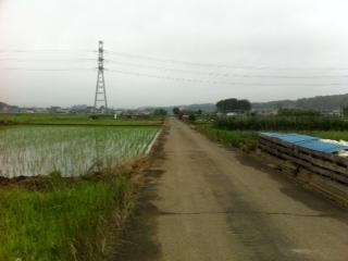 青梅田園風景