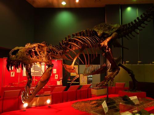 佐賀県立宇宙科学館 恐竜