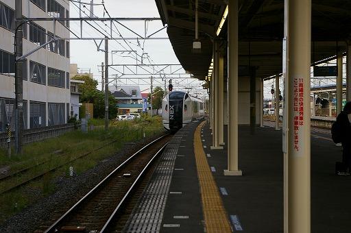 IMGP2430.jpg