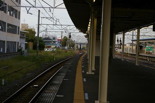 IMGP2432.jpg