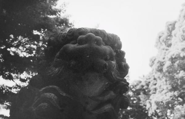 代々木八幡宮(渋谷区代々木)8