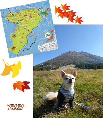 yuruiro20141026_copy_i001