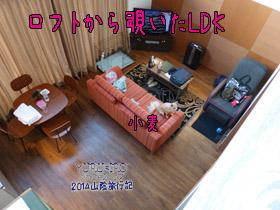 yuruiro20141107_i008