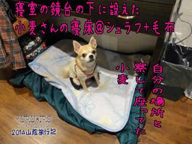 yuruiro20141107_i010