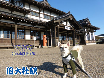 yuruiro20141119_i001