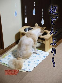 yuruiro20141013_i001