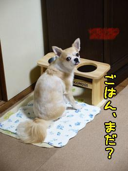 yuruiro20141013_i002