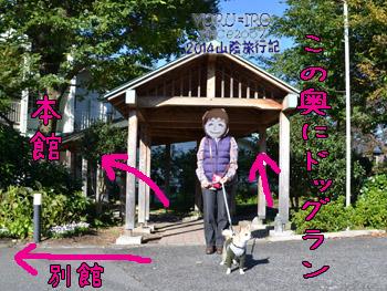 yuruiro20141107_i002