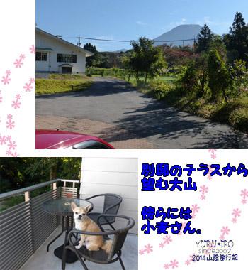 yuruiro20141107_i006