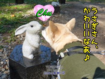 yuruiro20141114_i002