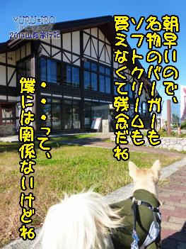 yuruiro20141128_i004