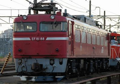 EF81 88