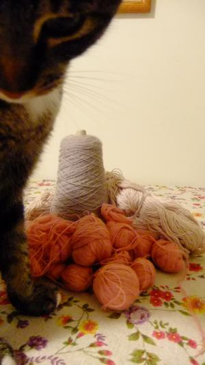 yarn-johnny_convert_20101202094930.jpg