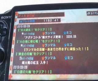DSC_0175_convert_20130329155324.jpg