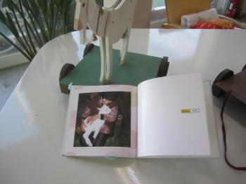 ヤギの絵本3