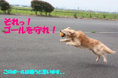 bu-51240001.jpg