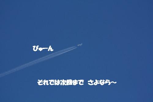bu-51560001.jpg