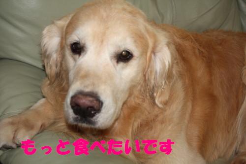 bu-52100001.jpg