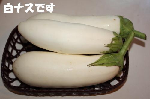 bu-52130001.jpg