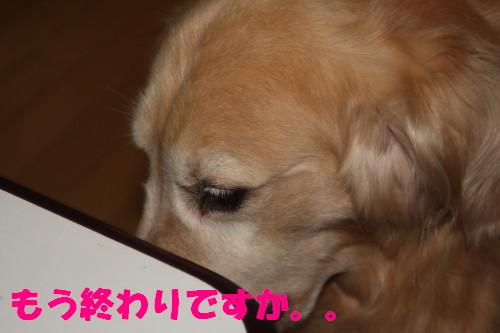 bu-53910001.jpg