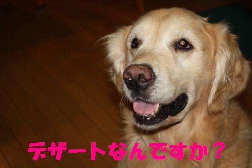 bu-54580001.jpg