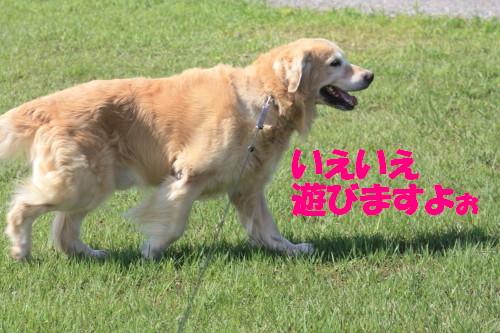 bu-56870001.jpg