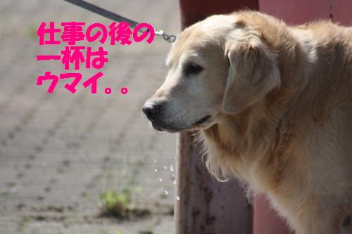 bu-56980001.jpg