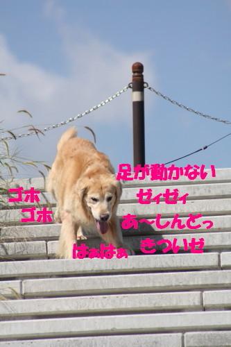bu-57040001a.jpg
