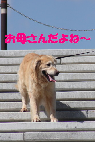 bu-57050001.jpg