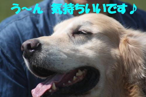 bu-57280001.jpg