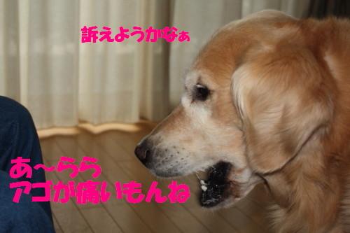 bu-57430001.jpg