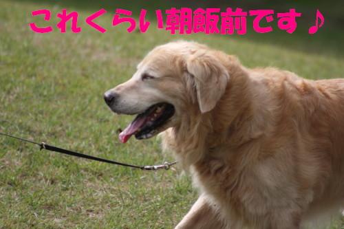 bu-57740001.jpg