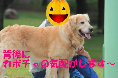 bu-57840001.jpg