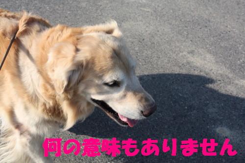 bu-58150001a.jpg