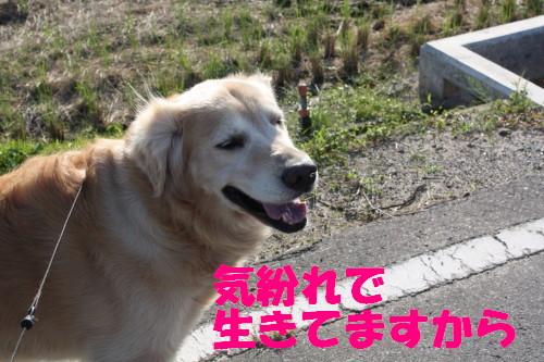 bu-58160001a.jpg