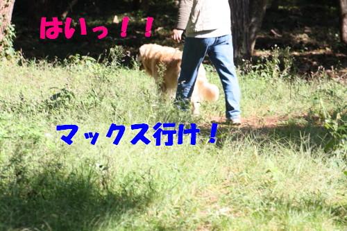 bu-58360001.jpg