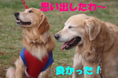 bu-58940001.jpg